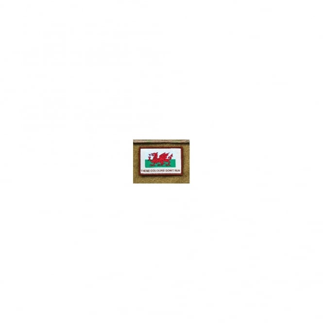 BritKit USA USA Woven Wales These Colours Don't Run Patch