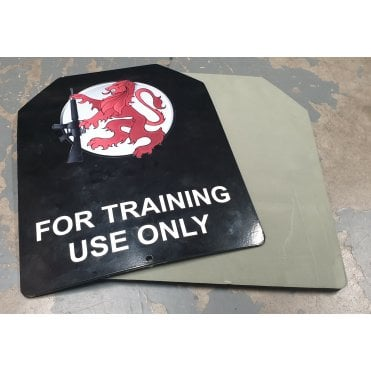 LWA Crossfit/Training Plate Foam Backing