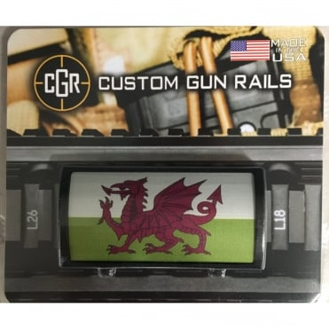 Custom Rail Panel-Welsh Flag